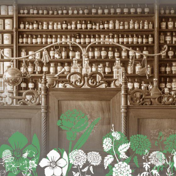 kosmetyki naturalne, sekrety urody, rytuały piękna, leki, uroda, pielęgnacja (Fot. Pixabay)