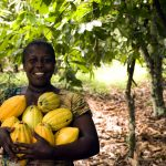 Chocolate Hair Spa. Afrykańska odżywka do włosów z kakao