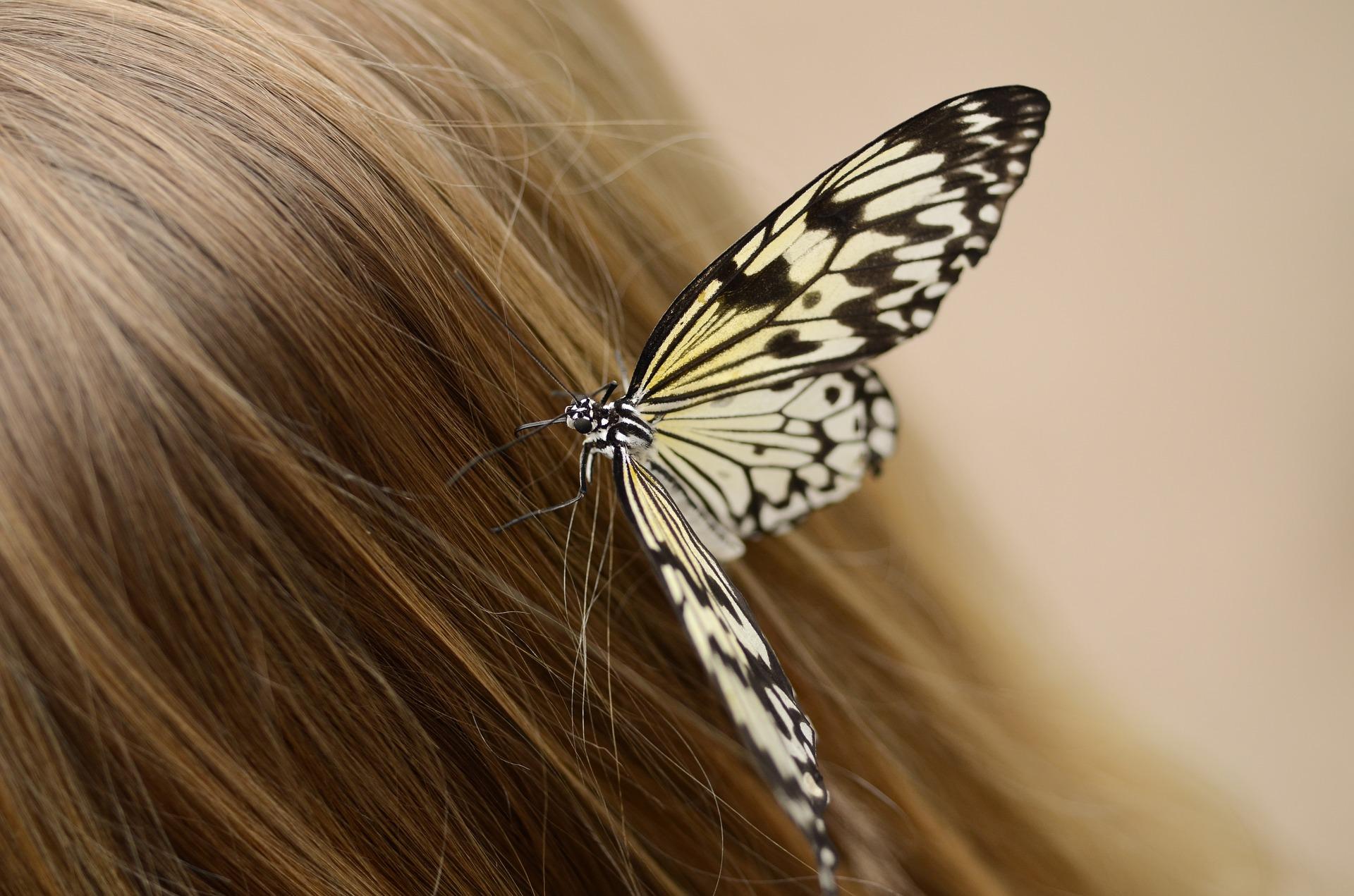 pielęgnacja włosów, domowy szampon, diy, przepisy na kosmetyki naturalne, włosy