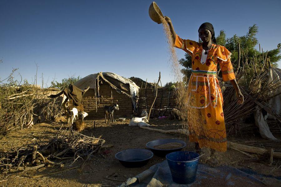 chebe, pielęgnacja włosów, afrykańskie kosmetyki naturalne, rytuały piękna, jak kobiety z różnych stron świata dbają o urodę