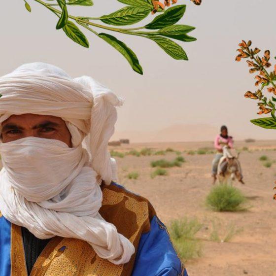 marokańskie kosmetyki naturalne, przepisy diy (Fot. Marta El Marakchi © All rights reserved)